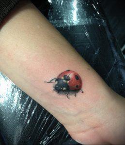 Фото тату про любовь рисунок Божья Коровка 03.02.2020 №199 -ladybug- tatufoto.com
