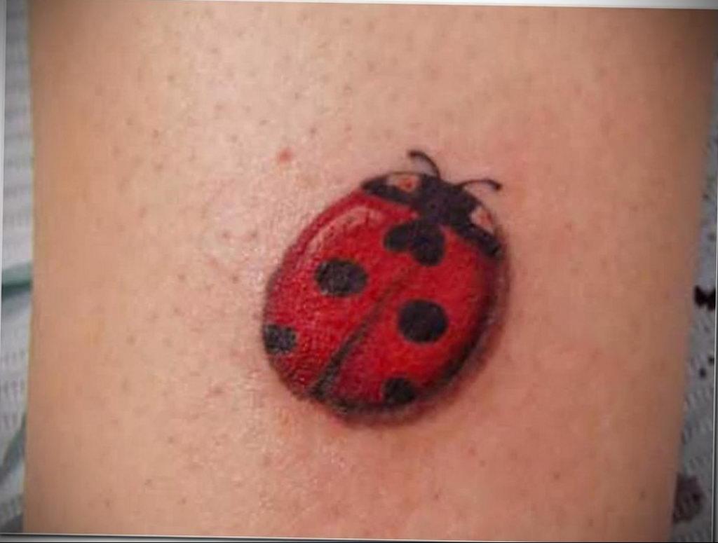 Фото тату про любовь рисунок Божья Коровка 03.02.2020 №215 -ladybug- tatufoto.com