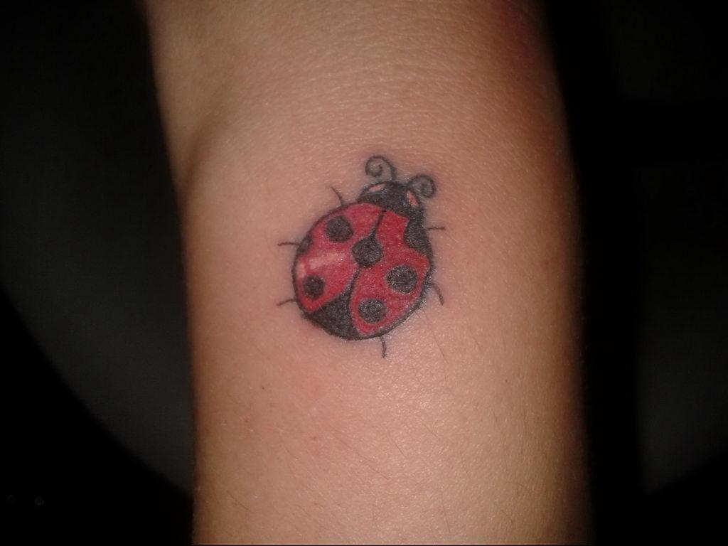 Фото тату про любовь рисунок Божья Коровка 03.02.2020 №216 -ladybug- tatufoto.com