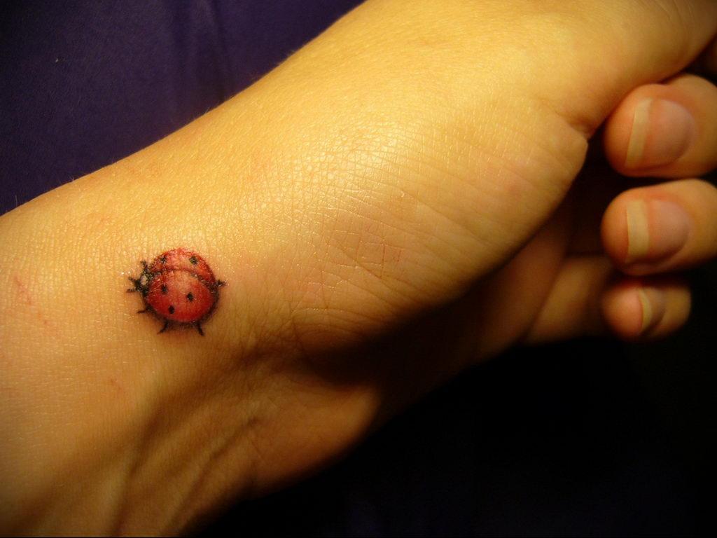 Фото тату про любовь рисунок Божья Коровка 03.02.2020 №219 -ladybug- tatufoto.com