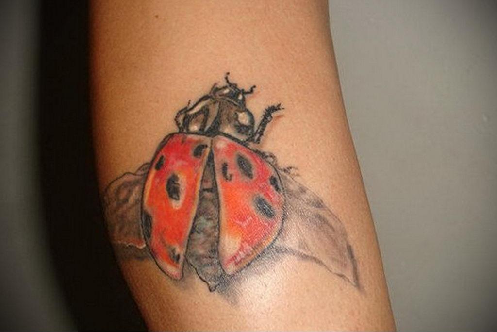 Фото тату про любовь рисунок Божья Коровка 03.02.2020 №226 -ladybug- tatufoto.com