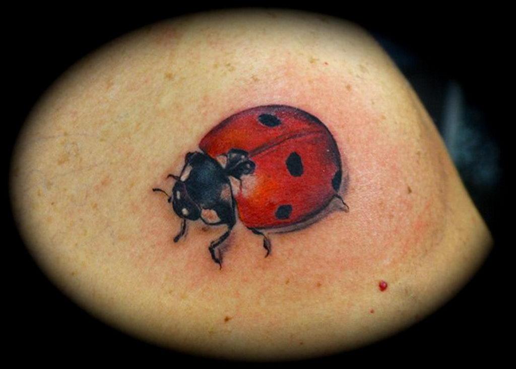 Фото тату про любовь рисунок Божья Коровка 03.02.2020 №228 -ladybug- tatufoto.com