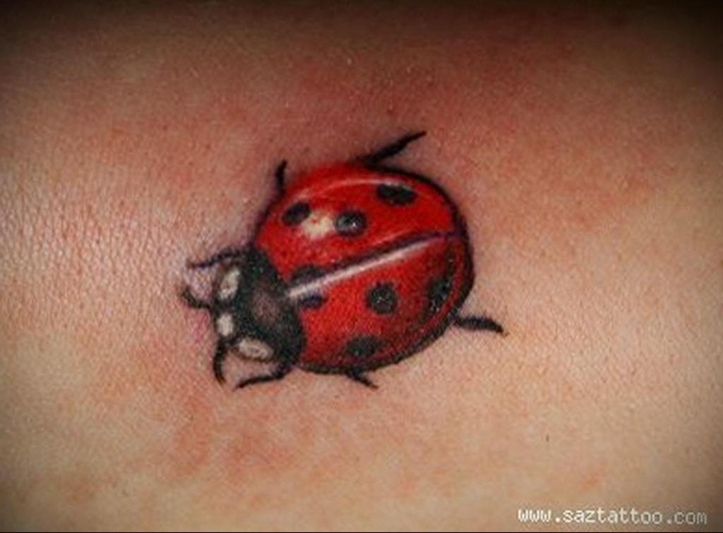 Фото тату про любовь рисунок Божья Коровка 03.02.2020 №230 -ladybug- tatufoto.com