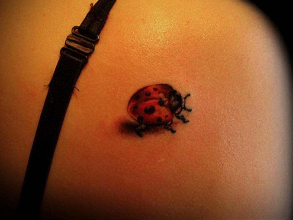 Фото тату про любовь рисунок Божья Коровка 03.02.2020 №243 -ladybug- tatufoto.com