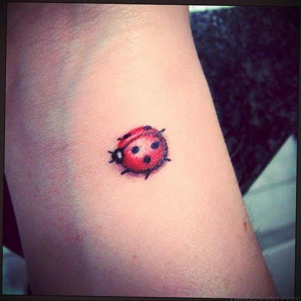 Фото тату про любовь рисунок Божья Коровка 03.02.2020 №249 -ladybug- tatufoto.com