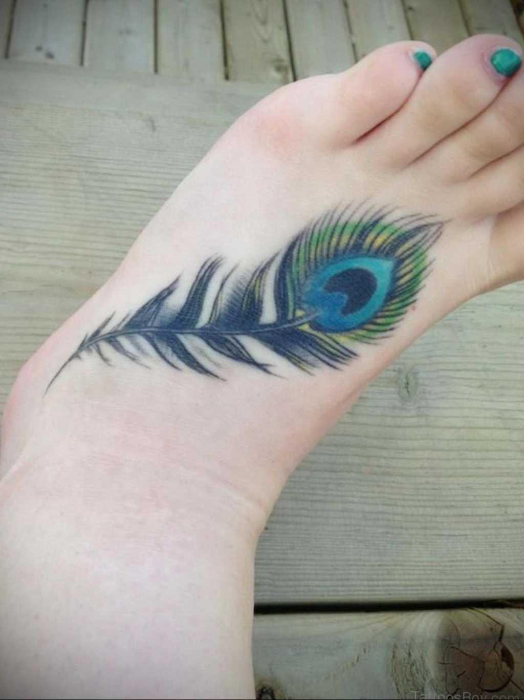 Фото тату про любовь рисунок Перо 03.02.2020 №216 -tattoo feather- tatufoto.com