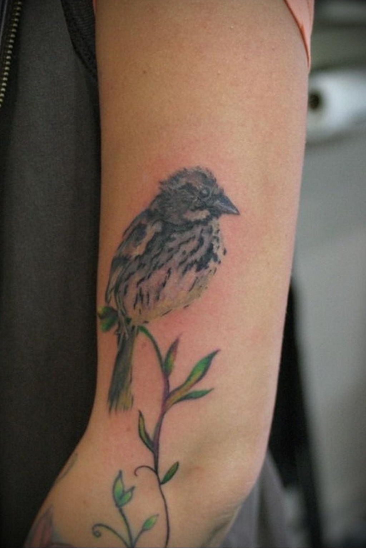 Фото тату про любовь рисунок Птица 03.02.2020 №015 -bird tattoo- tatufoto.com
