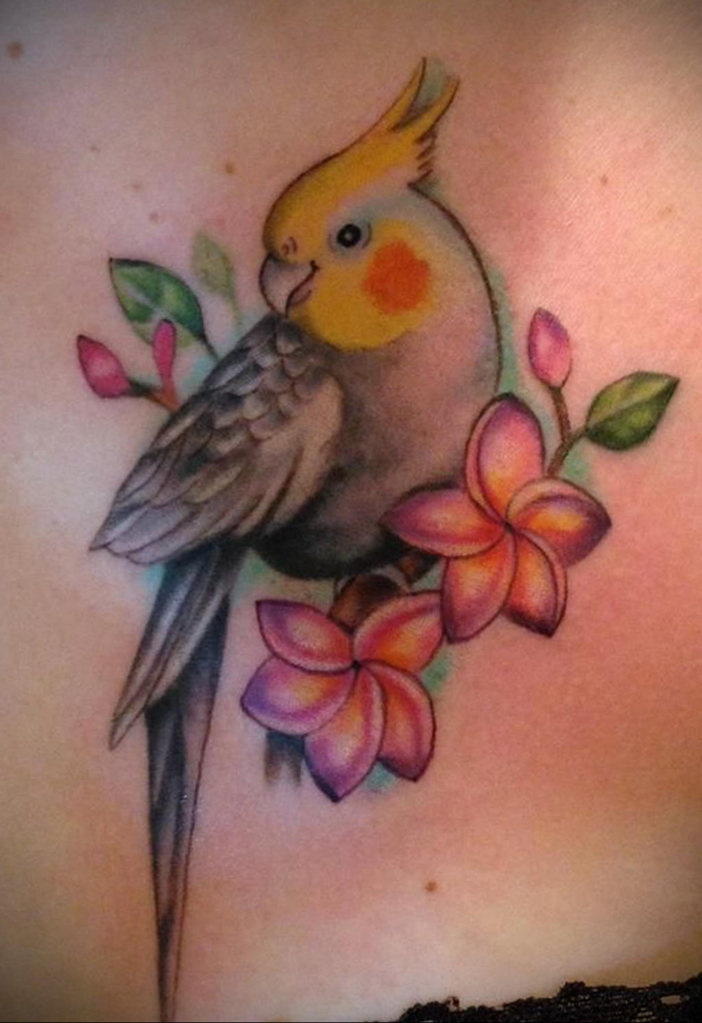 Фото тату про любовь рисунок Птица 03.02.2020 №055 -bird tattoo- tatufoto.com