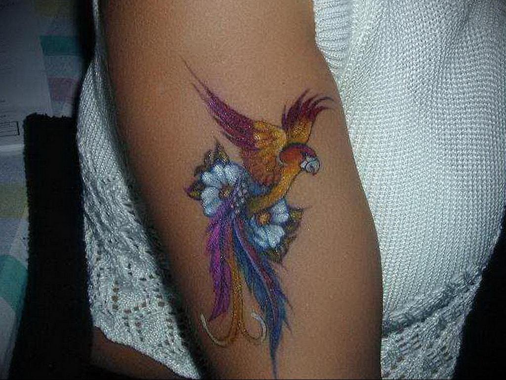 Фото тату про любовь рисунок Птица 03.02.2020 №081 -bird tattoo- tatufoto.com