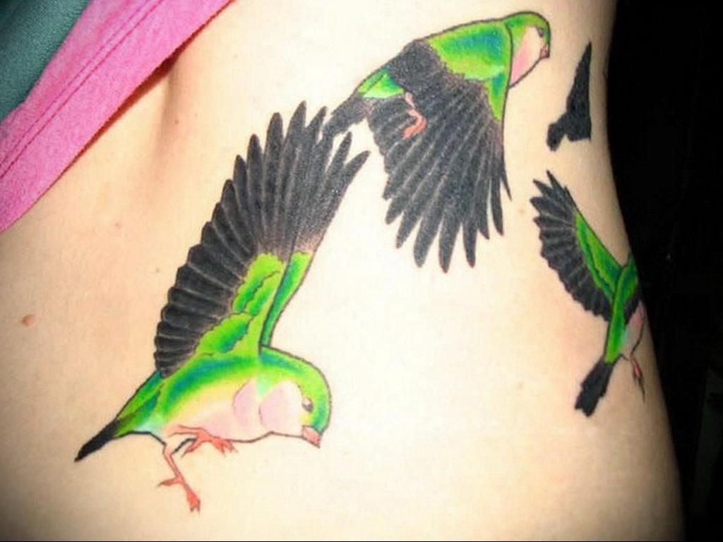 Фото тату про любовь рисунок Птица 03.02.2020 №148 -bird tattoo- tatufoto.com