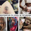 Мероприятия по уходу за татуировкой - информация и фото примеры готовых рисунков тату