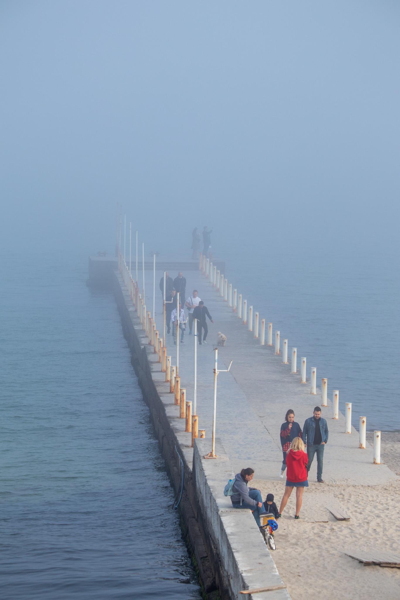 Фото туман у моря в солнечный день весной 3
