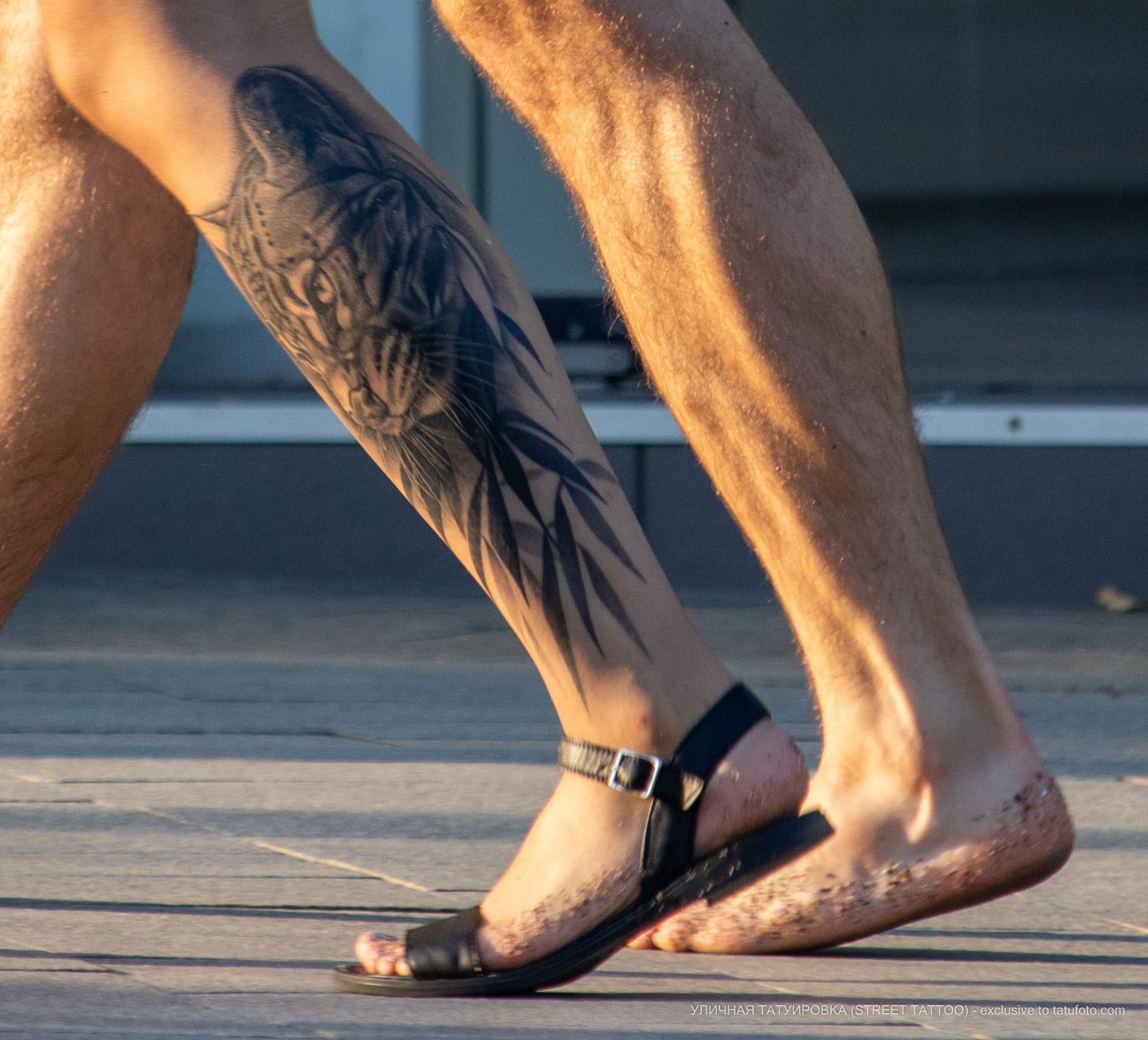 Тату с кошкой в кустах на ноге парня – Уличная татуировка (street tattoo) № 06 – 18.06.2020 – tatufoto.com 3
