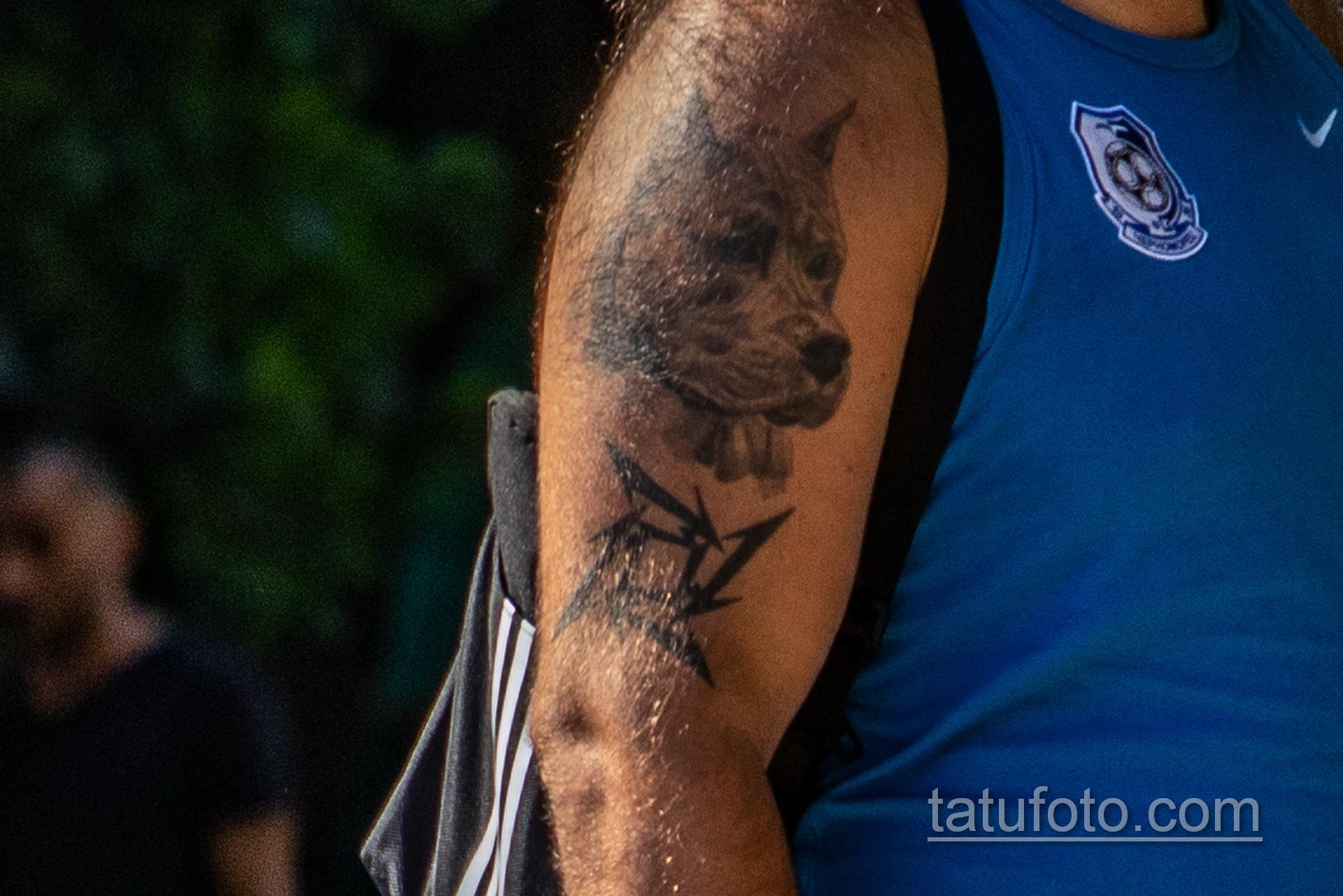 Тату с мордой Пита на правом плече мужчины – Уличная татуировка 14.09.2020 – tatufoto.com 2