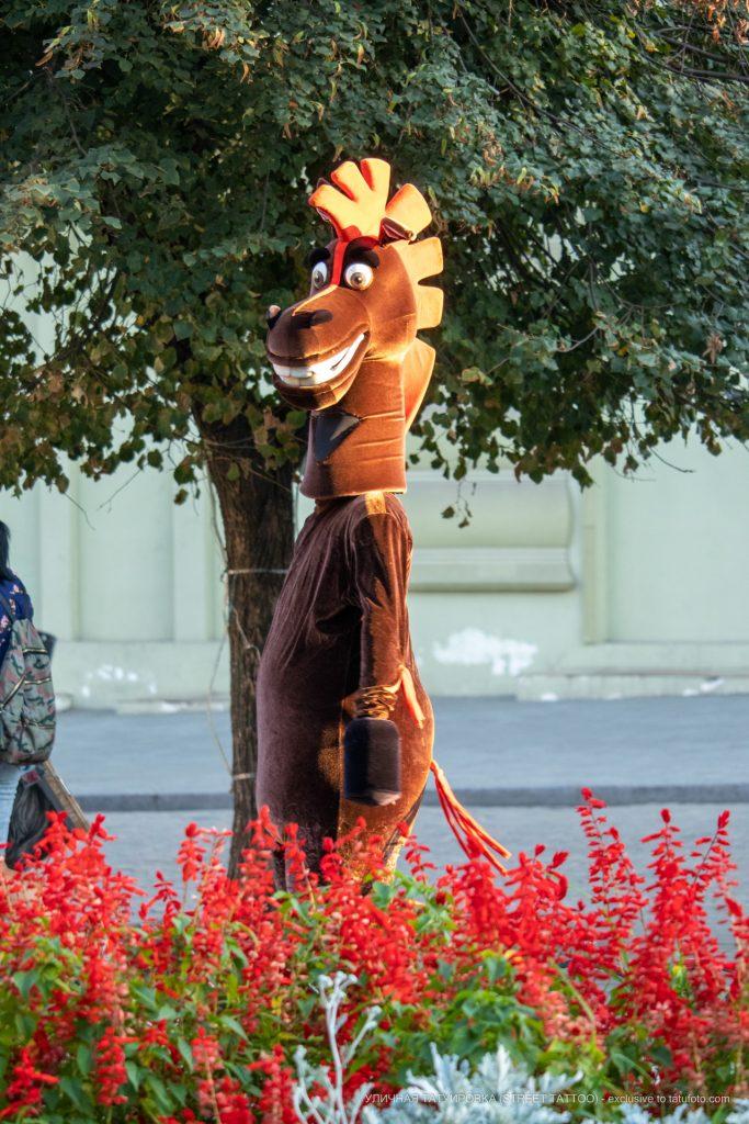 Человек в костюме коня из Мадагаскара развлекающий людей на Дерибасовской – 17.09.2020 – tatufoto.com 1