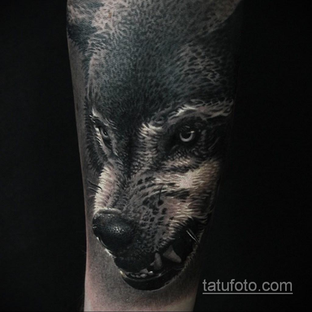волк тату на предплечье 25.10.2020 №025 -forearm tattoo- tatufoto.com