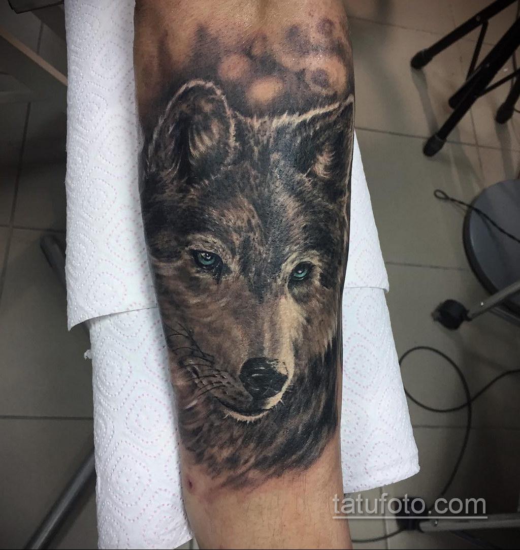 волк тату на предплечье 25.10.2020 №051 -forearm tattoo- tatufoto.com