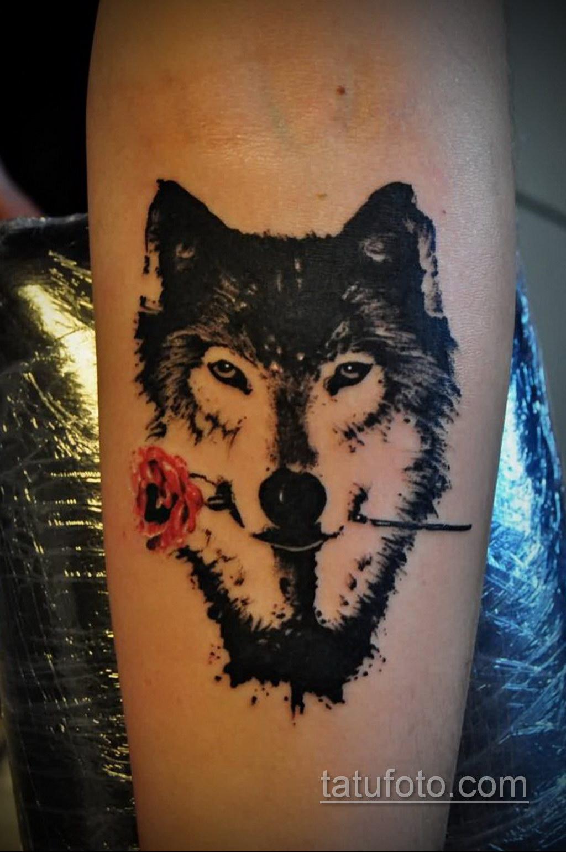 волк тату на предплечье 25.10.2020 №058 -forearm tattoo- tatufoto.com