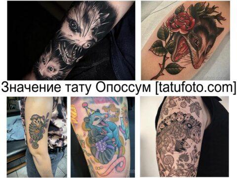 Значение тату Опоссум - информация про смысл и особенности - фото рисунков тату