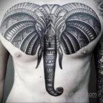 Рисунок тату слон- вариант 30.11.2020 №347 -elephant tattoo- tatufoto.com
