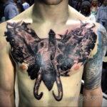 Рисунок тату слон на груди 30.11.2020 №008 -elephant tattoo on chest- tatufoto.com