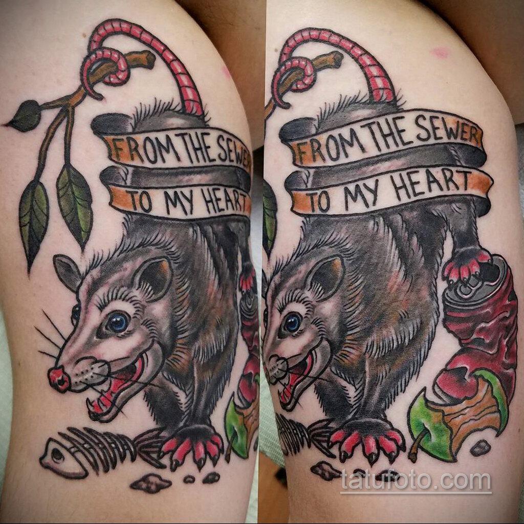 Фото пример рисунка тату Опоссум 18.11.2020 №131 -Opossum tattoo- tatufoto.com