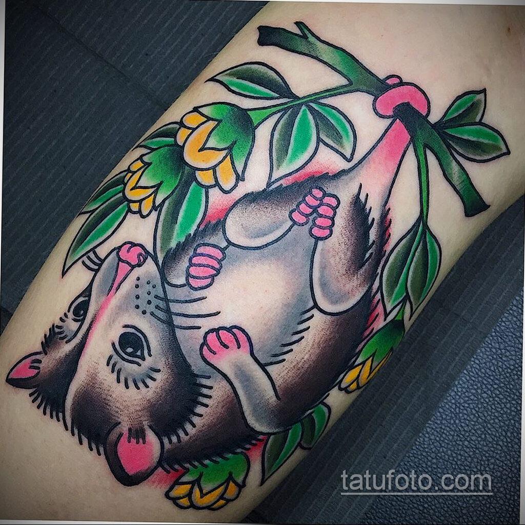 Фото пример рисунка тату Опоссум 18.11.2020 №133 -Opossum tattoo- tatufoto.com