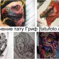 Значение тату Гриф - информация про особенности и фото тату рисунков