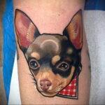Пример Татуировки Чихуахуа 16.12.2020 №231 -Chihuahua Tattoo- tatufoto.com