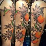 Пример рисунка татуировки апельсином 12.12.2020 №1032 -orange tattoo- tatufoto.com