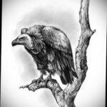 Пример рисунка татуировки птица Гриф 13.12.2020 №443 -tattoo vulture- tatufoto.com
