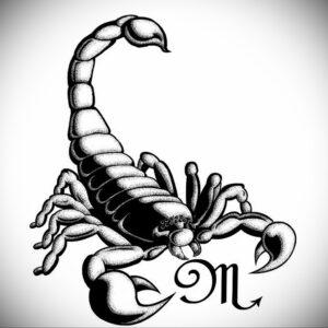 Эскиз для татуировки скорпион 16.01.2021 №0001 -scorpion tattoo sketch- tatufoto.com