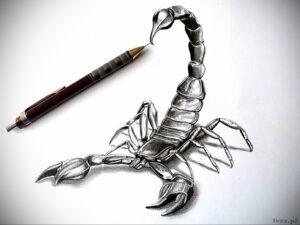 Эскиз для татуировки скорпион 16.01.2021 №0002 -scorpion tattoo sketch- tatufoto.com