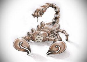 Эскиз для татуировки скорпион 16.01.2021 №0008 -scorpion tattoo sketch- tatufoto.com