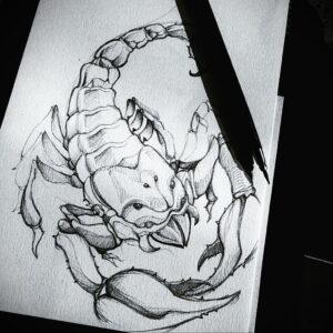 Эскиз для татуировки скорпион 16.01.2021 №0011 -scorpion tattoo sketch- tatufoto.com