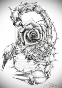 Эскиз для татуировки скорпион 16.01.2021 №0025 -scorpion tattoo sketch- tatufoto.com