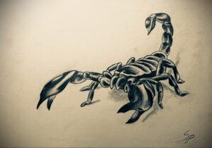 Эскиз для татуировки скорпион 16.01.2021 №0041 -scorpion tattoo sketch- tatufoto.com