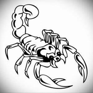 Эскиз для татуировки скорпион 16.01.2021 №0043 -scorpion tattoo sketch- tatufoto.com