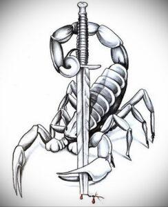 Эскиз для татуировки скорпион 16.01.2021 №0048 -scorpion tattoo sketch- tatufoto.com