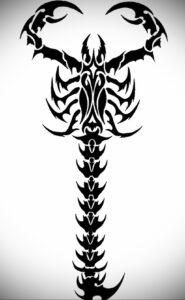 Эскиз для татуировки скорпион 16.01.2021 №0050 -scorpion tattoo sketch- tatufoto.com