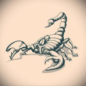 Эскиз для татуировки скорпион 16.01.2021 №0062 -scorpion tattoo sketch- tatufoto.com