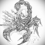 Эскиз для татуировки скорпион 16.01.2021 №0063 -scorpion tattoo sketch- tatufoto.com