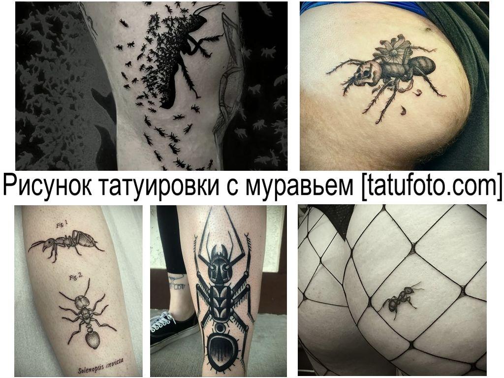 Рисунок татуировки с муравьем - информация про особенности и фото рисунков тату с муравьем