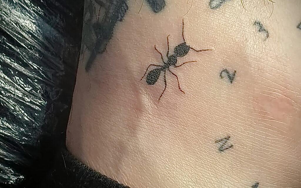Рисунок татуировки с муравьем