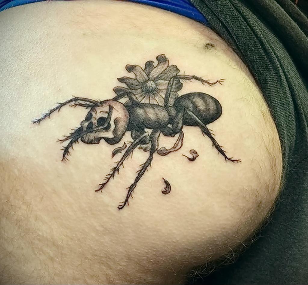 Фото пример рисунка татуировки с муравьем 21.03.2021 №092 - ant tattoo - tatufoto.com