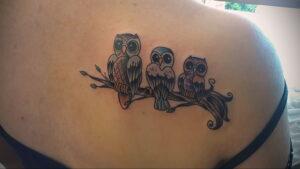 маленькая тату с совой на фото 15.02.2021 №0026 - little owl tattoo- tatufoto.com