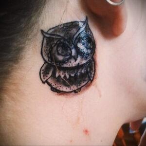 маленькая тату с совой на фото 15.02.2021 №0055 - little owl tattoo- tatufoto.com