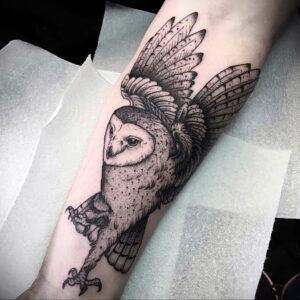 мужской рисунок тату с совой пример 15.02.2021 №0035 - owl tattoo men - tatufoto.com