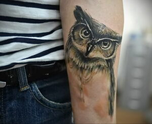 мужской рисунок тату с совой пример 15.02.2021 №0071 - owl tattoo men - tatufoto.com