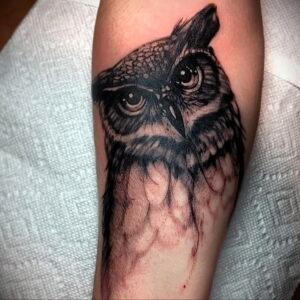 мужской рисунок тату с совой пример 15.02.2021 №0133 - owl tattoo men - tatufoto.com